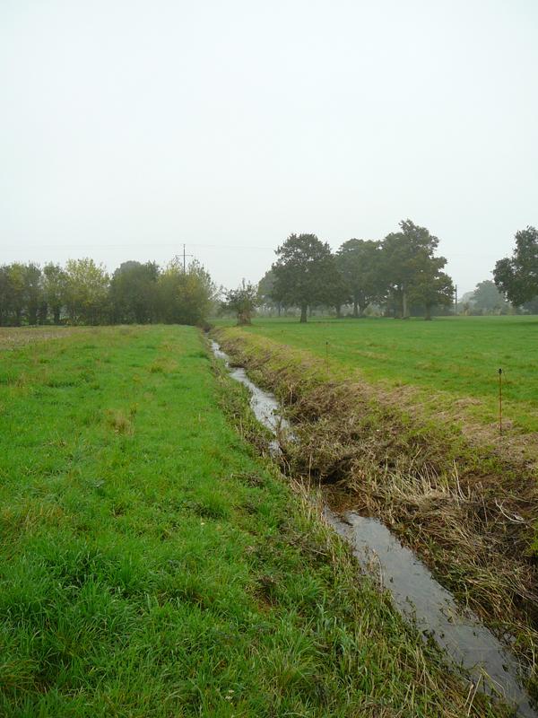 Il s'agit d'un cours : le ruisseau de la Masse