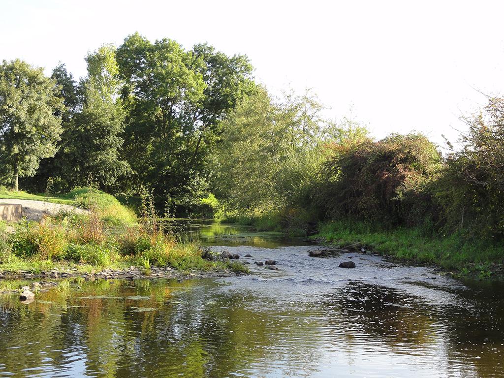 Zone d'eau courante sur l'Oudon (radier)